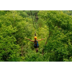 $89 TreeTop Zipline Tour at Climb Works for $44.50